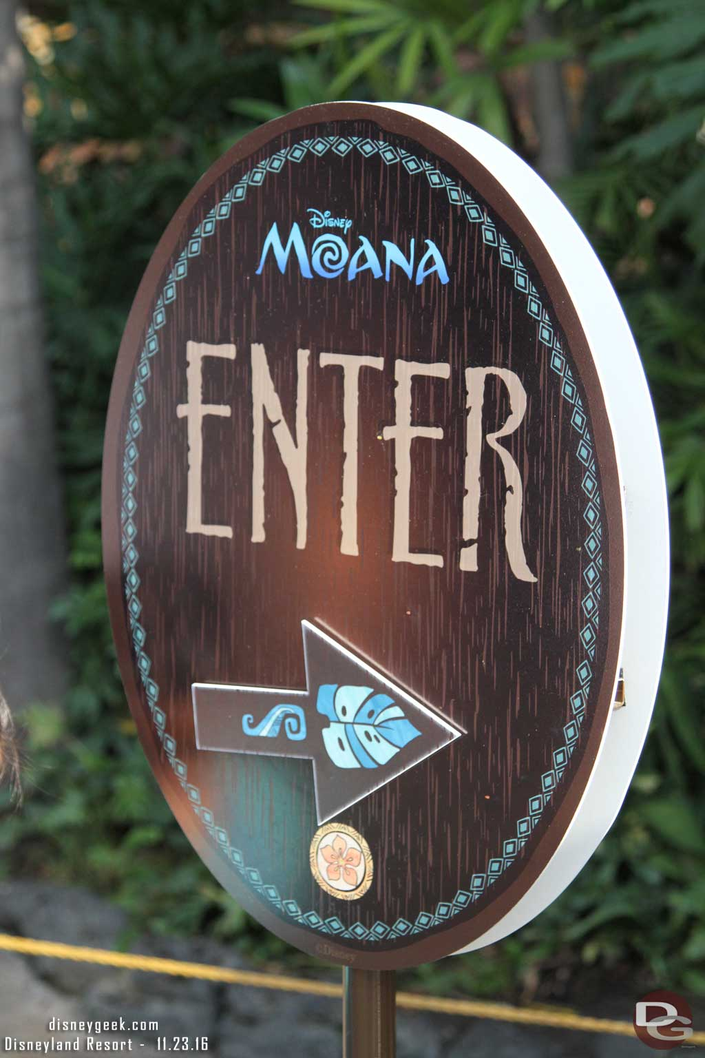 Moana Meet and Greet in Adventureland