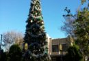 Buena Vista Street #Christmas tree
