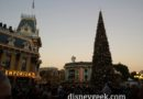 Town Square Tree Lighting #Disneyland