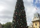 #Disneyland #Christmas tree in Town Square