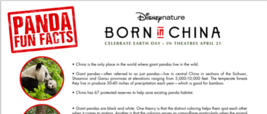 Born In China Panda Facts