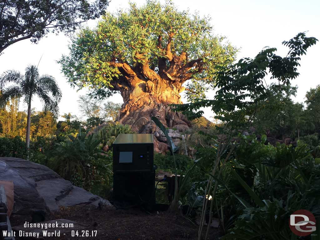 New projectors on the backside of the Tree of Life so the Awakenings show can be expanded in the coming weeks. Hopefully these will be covered/hidden somehow soon too.