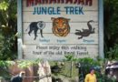 Maharajah Jungle Trek at Disney's Animal Kingdom