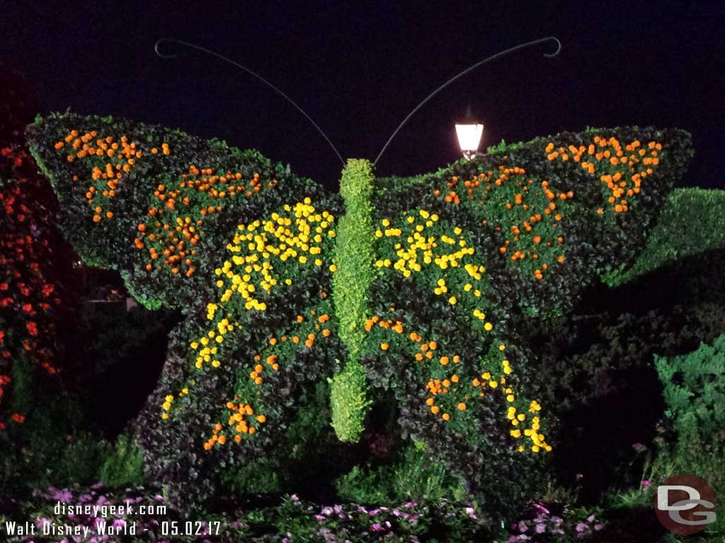 Butterfly topiary under the lights.