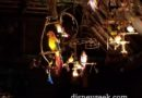 #Disneyland Enchanted Tiki Room