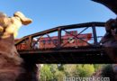 #Disneyland Railroad passing over a trestle along the Big Thunder Trail