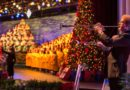 Walt Disney World Resort 2017 Holiday Offerings (Press Release)