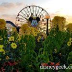 Mickey's Fun Wheel as the sun is setting in Disney California Adventure