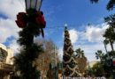 Buena Vista Street Christmas tree this afternoon