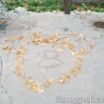Leaf art along the walkway in Grizzly Recreation Area