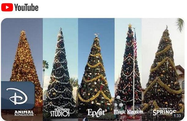 Video - Walt Disney World Christmas Trees