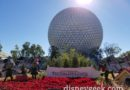 Arriving at Epcot