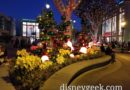 Disneyland Downtown Disney Christmas decorations