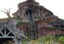 Splash Mountain is closed for annual renovation work