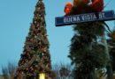 Buena Vista Street Christmas Tree