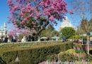 Disneyland hub had a spring look this afternoon