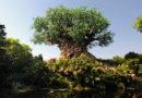 Disney's Animal Kingdom – Milestones