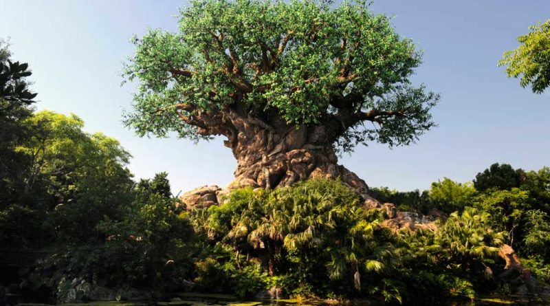 Disney Animal Kingdom - Tree of Life (Disney Photo)