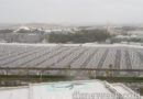 Morning view of Tokyo Disneyland today, its in the mid 60s, 20mph winds and light rain