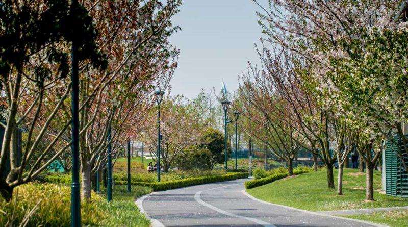 Wishing Star Park - Shanghai Disney Resort