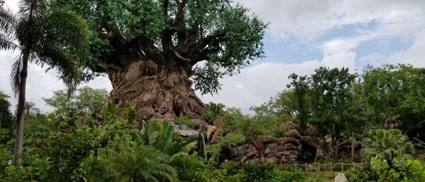 WDW Day 2: Morning at Disney's Animal Kingdom