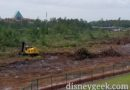 Tree Clearing in Progress near the Epcot Entrance (several pictures)