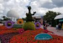 Epcot Flower & Garden Pictures