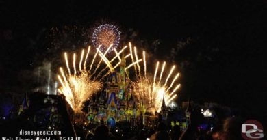 Happily Ever After at the Magic Kingdom in Walt Disney World