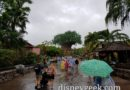 Arriving at a rainy Disney's Animal Kingdom