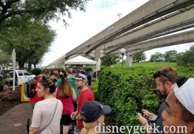 A long line at the Magic Kingdom security checkpoint this morning