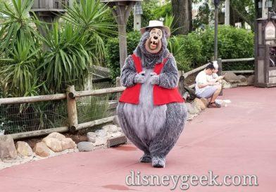 Big Al roaming around Frontierland in the Magic Kingdom