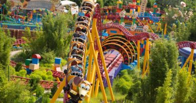 Toy Story Land -