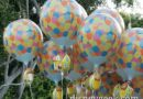 Disneyland Up! Balloon Follow-up – What it looks like several weeks after purchase