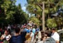 FastPass Return for Grizzly River Run is backed up to Redwood Creek