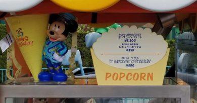Tokyo Disneyland Popcorn Bucket