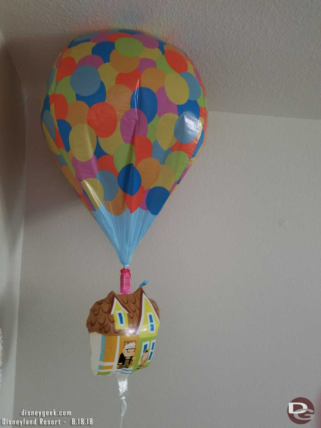 Up! Balloon that was purchased on 7/13 as of 8/18.