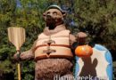 Grizzly Recreation Area Bear is ready for Halloween