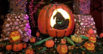 """Halloween  Pump-""""cake"""" Patch in the Grand Californian (several pics)"""