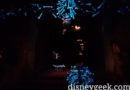 Zero in the endless hallway of the Haunted Mansion Holiday