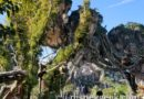 WDW Day 2: Pictures from a morning visit to Pandora at Disney's Animal Kingdom