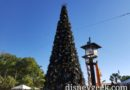 Disney's Animal Kingdom Christmas Tree
