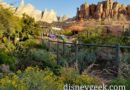 Ornament Valley- Cars Land