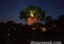 Tree of Life from the trail to Asia