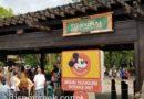 Starting my final morning of this trip at Disney's Animal Kingdom