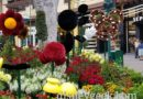 Pictures: Downtown Disney Planters feature Mickey & Minnie
