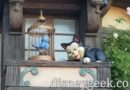 Picture & Video: Figaro & blue bird have returned to Fantasy Faire