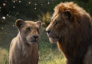 """Disney's """"The Lion King"""" : Maggie's Review"""