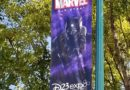 D23 Expo Banners on Magic Way