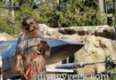 Chewie working on an X Wing on Batuu just outside Black Spire Outpost at Disneyland