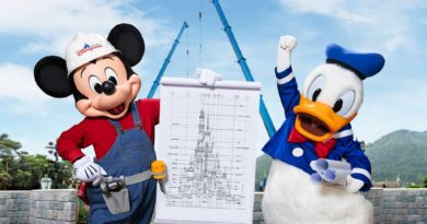 Guests will witness the ongoing castle transformation progress on their coming visits to the park.